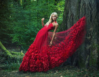 Beautiful woman wearing an amazing red gown Stock Photography