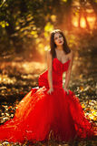 Beautiful woman wearing an amazing red gown. Girl in a red dress walking in the autumn forest Stock Photography