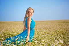Beautiful woman wearing blue dress on a field Stock Photos