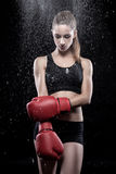 Beautiful woman wearing boxing gloves Royalty Free Stock Images