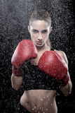 Beautiful woman wearing boxing gloves Royalty Free Stock Photo