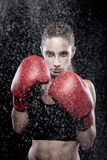 Beautiful woman wearing boxing gloves Stock Images