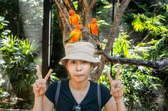 Beautiful woman wearing a hat with birds. Beautiful woman wearing a hat with birds standing on her head Royalty Free Stock Photos