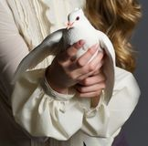 Beautiful woman with white dove Royalty Free Stock Photo