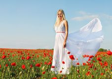 Beautiful woman in white dress on poppy field Stock Images