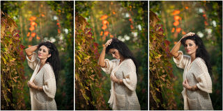 Beautiful woman in white posing in autumnal park. Young brunette woman spending time in autumn near a tree in forest Stock Photos