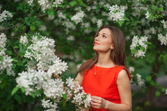 Beautiful woman in white spring blossom of apple trees Royalty Free Stock Photography