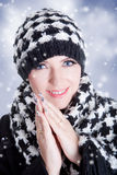 Beautiful woman in winer clothes Stock Image