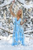 Beautiful woman in the winter forest. Stock Photo