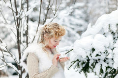 Beautiful woman in winter forest Stock Images