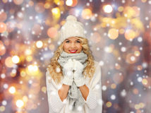 Beautiful woman in winter hat, scarf and mittens Stock Images
