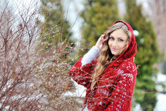 Beautiful woman in winter in a park in red kerchief Stock Images