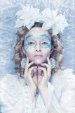 Beautiful woman with winter style makeup royalty free stock photography