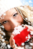 Beautiful Woman With A Gift Stock Photography
