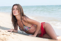 Free Beautiful Woman With Bikini At The Beach Stock Image - 59605271