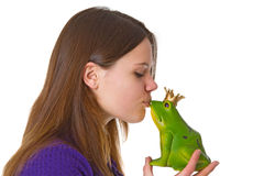 Beautiful Woman With Frog Prince Royalty Free Stock Photography