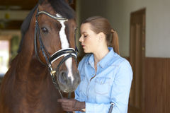 Beautiful Woman With Her Sport Horse Stock Photography
