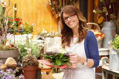 Beautiful woman working in flower shop Royalty Free Stock Photo