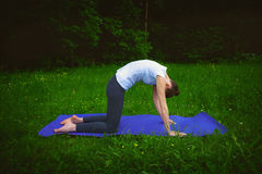 Beautiful woman working out yoga excercises mardzhariasana on fitness mat Royalty Free Stock Image