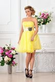 Beautiful woman in yellow dress in luxury studio. Stock Photography