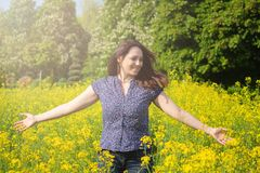 Beautiful woman in a yellow flowers field stock images