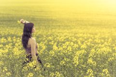 Beautiful woman in yellow flowers from side behind looking right. Attractive genuine young girl enjoying the warm summer sun in a wide green and yellow meadow Royalty Free Stock Image