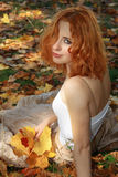 Beautiful woman in yellow leaves Royalty Free Stock Photos