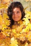 Beautiful woman with yellow maple Stock Image