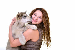 Beautiful woman with young dog Alaskan Malamute. Beautiful woman with young dog Malamute isolated on white stock photo
