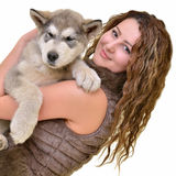 Beautiful woman with young dog Alaskan Malamute. Beautiful woman with young dog Malamute isolated on white royalty free stock images