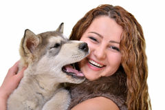 Beautiful woman with young dog Alaskan Malamute. Beautiful woman with young dog Malamute isolated on white royalty free stock photo