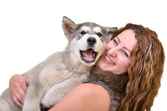 Beautiful woman with young dog Alaskan Malamute. Beautiful woman with young dog Malamute on white royalty free stock image