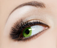 Beautiful womanish eye Royalty Free Stock Photography
