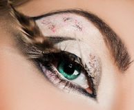 Beautiful womanish eye Stock Photos