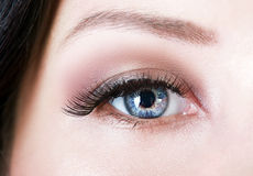 Beautiful womanish eye Royalty Free Stock Photo