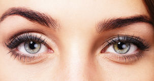 Beautiful womans eyes. Closeup of beautiful womans eyes Stock Photos