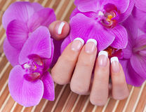 Beautiful womans hands and nails with french manic Stock Photo
