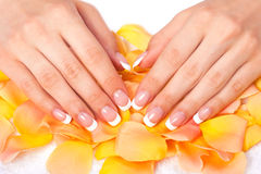 Beautiful womans hands and nails with french manic Stock Photos