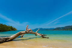 Beautiful women on beach. Summer landscape with beautiful caucasian girl sitting on fallen tree on remote tropical island near koh Chang in Thailand. Seascape Stock Photography
