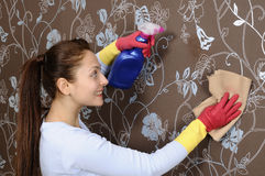 Beautiful women cleaning the house Royalty Free Stock Images