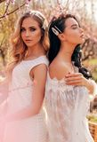 Beautiful  women in elegant dresses posing among flowering peach trees in garden royalty free stock photo
