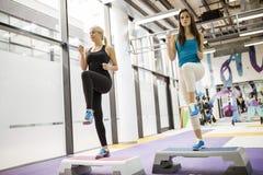 Beautiful women exercising aerobics Stock Photos