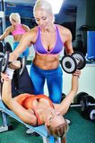 Beautiful women exercising with personal trainer. Beautiful women exercising with personal fitness trainer Stock Photography