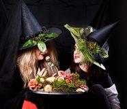 Beautiful women in the Halloween. Beautiful girls in the image of witches on Halloween Royalty Free Stock Photos