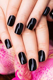 Beautiful women hands with black manicure Stock Photo