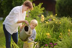 Beautiful women and her cute grandson watering plants in the garden at summer sunny day stock photos