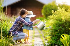 Beautiful women and her cute grandson watering plants in the garden at summer sunny day Stock Images