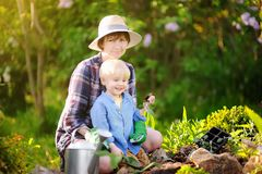 Beautiful woman and her cute son planting seedlings in bed in the domestic garden at summer day Royalty Free Stock Photos
