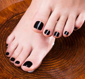 Beautiful women legs with black pedicure. After Spa procedures - Spa treatment concept Royalty Free Stock Photos