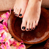 Beautiful women legs with black pedicure after Spa procedures. Spa treatment concept Stock Images